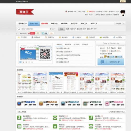 薇晓朵技术论坛 V1.3社区版GBK DZ模板 x3.2模板 价值300元