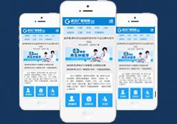蓝白WAP手机综合医院类整站源码