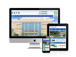 信息职业技术学院学校类网站织梦模板(带手机端)